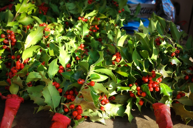 Holly and other festive holiday decorations sold in open markets in Madrid.